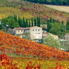 Wine Tasting Day Tours from Florence Are...